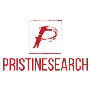 pristinesearch's Arcade Avatar